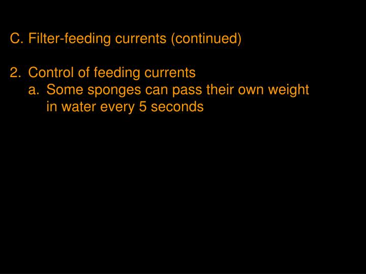 C.Filter-feeding currents (continued)