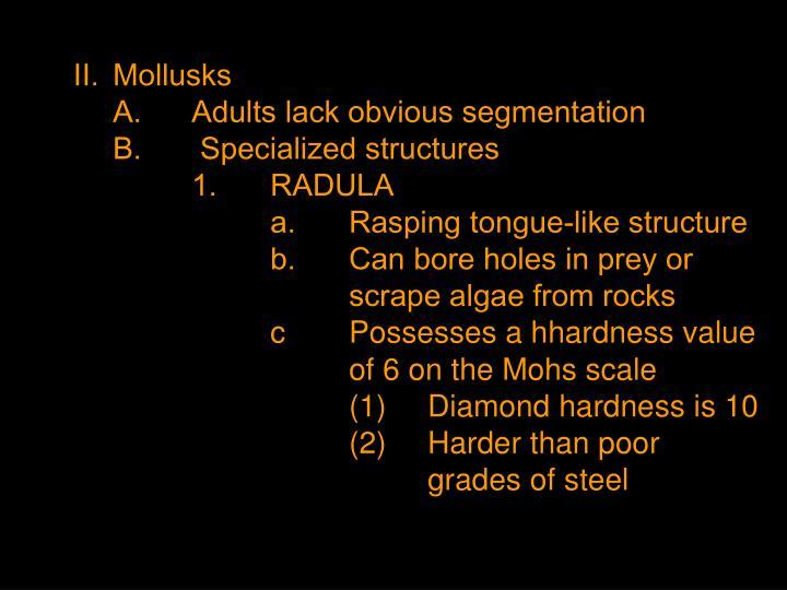 II.Mollusks