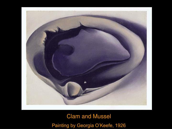 Clam and Mussel