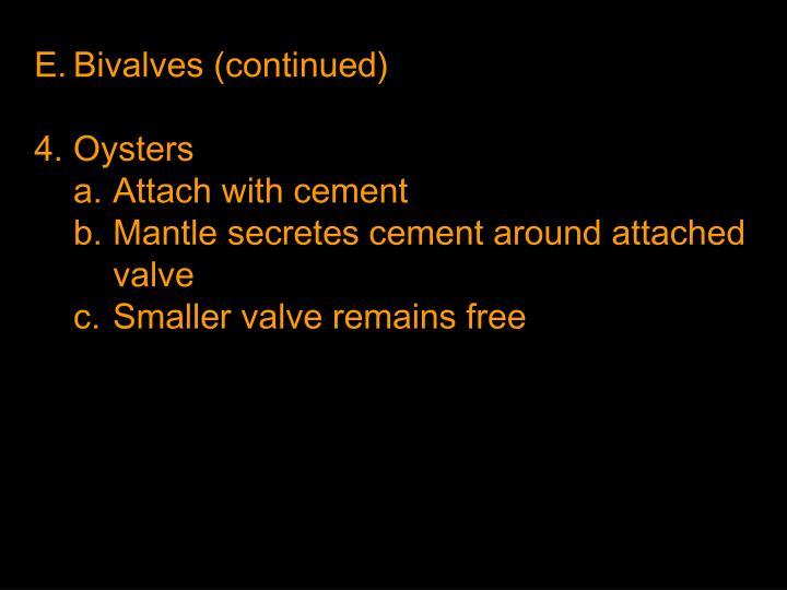 Bivalves (continued)