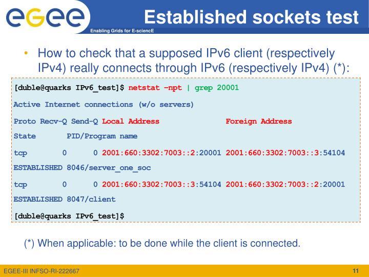 Established sockets test