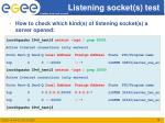 listening socket s test