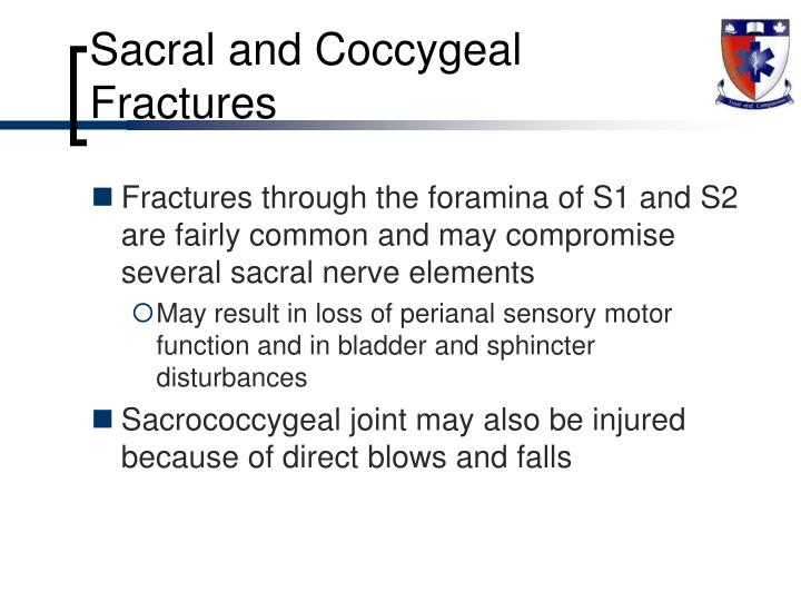 Sacral and Coccygeal Fractures