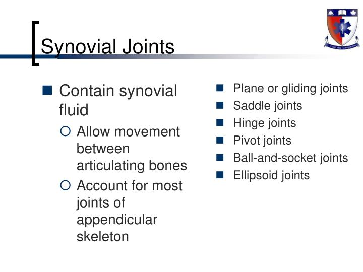 Plane or gliding joints