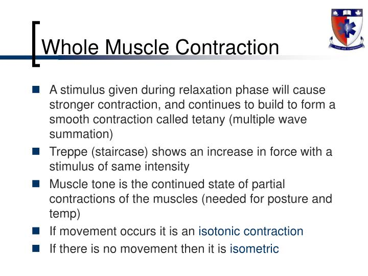 Whole Muscle Contraction