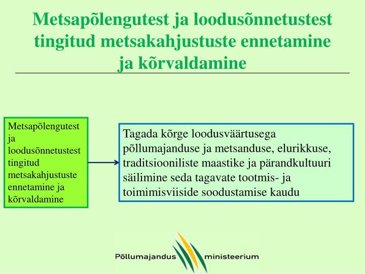 Metsapõlengutest ja loodusõnnetustest tingitud metsakahjustuste ennetamine ja kõrvaldamine