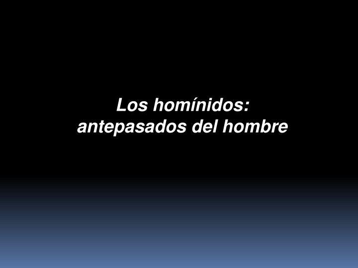 Los homínidos: