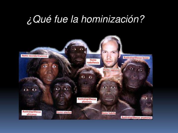 ¿Qué fue la hominización?