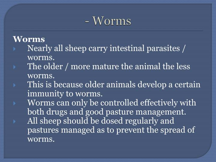 - Worms