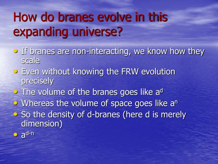 How do branes evolve in this expanding universe?