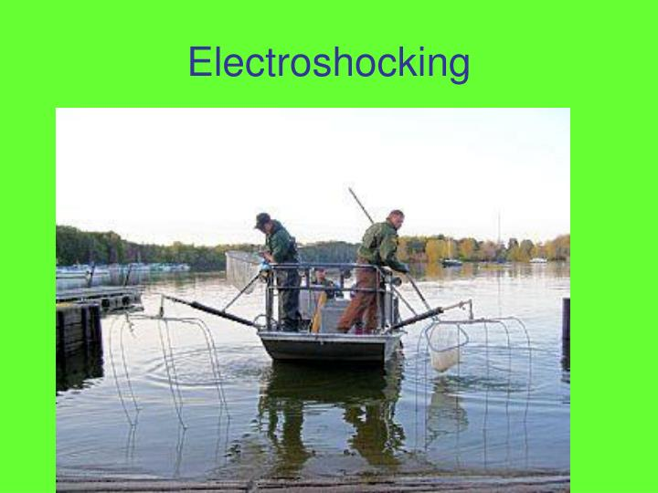 Electroshocking