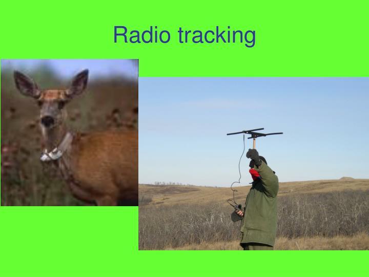 Radio tracking