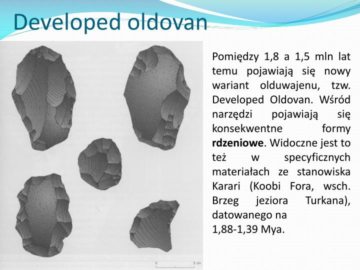 Developed oldovan