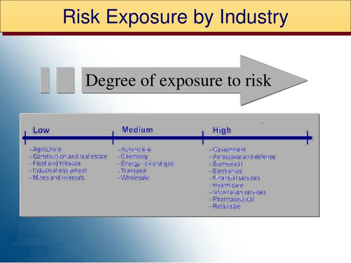 Risk Exposure by Industry