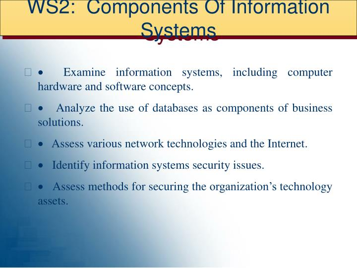 WS2:  Components Of Information Systems