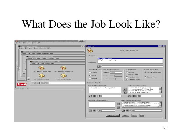 What Does the Job Look Like?