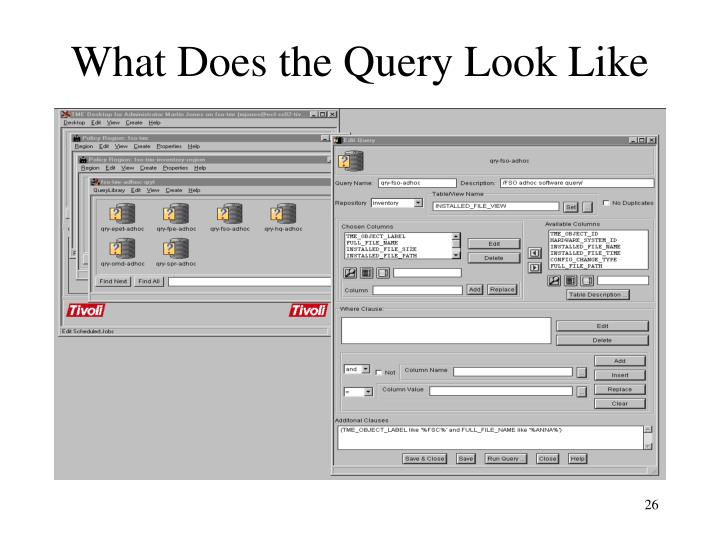 What Does the Query Look Like