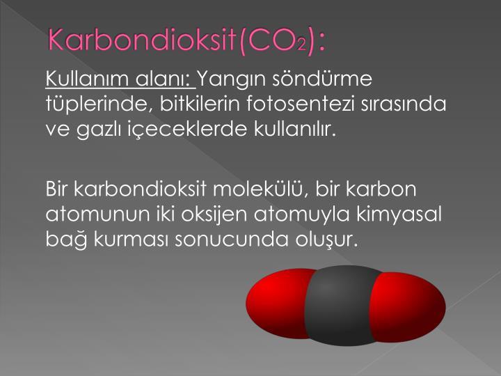 Karbondioksit(CO