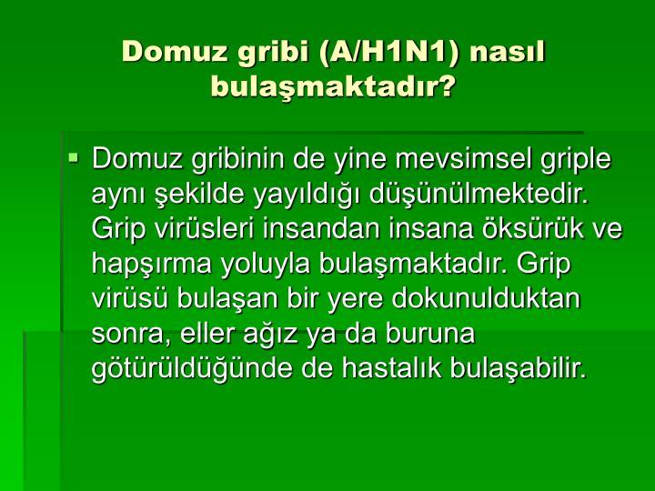 Domuz gribi (A/H1N1) nasıl bulaşmaktadır?