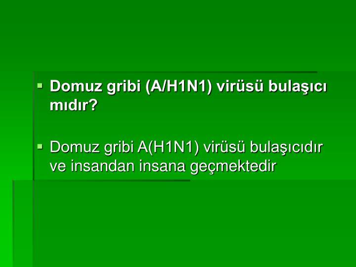 Domuz gribi (A/H1N1) virüsü bulaşıcı mıdır?