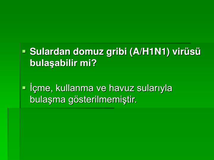 Sulardan domuz gribi (A/H1N1) virüsü bulaşabilir mi?