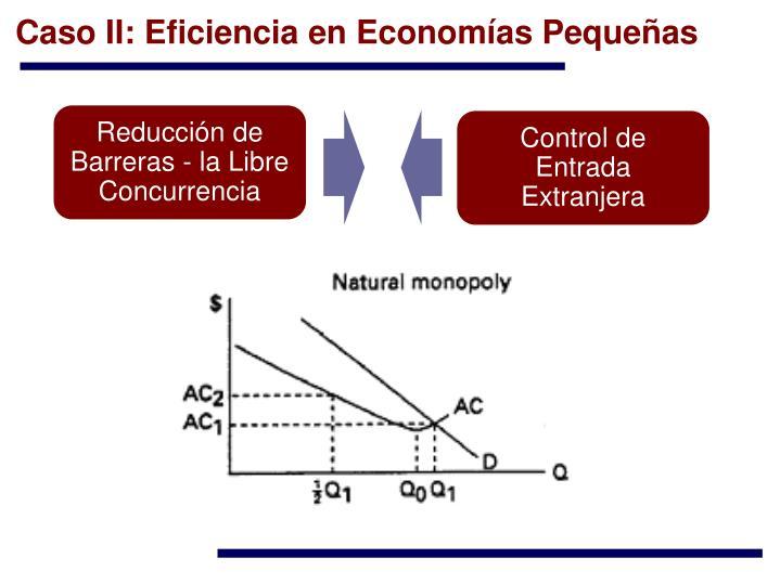 Caso II: Eficiencia en Economías Pequeñas