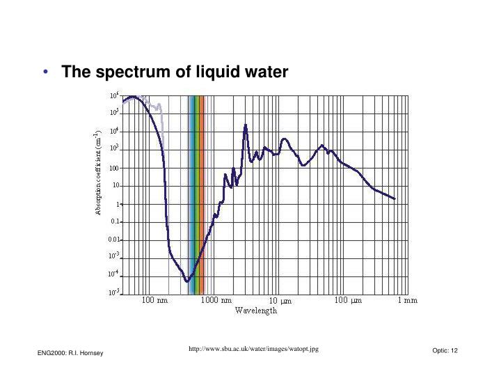 The spectrum of liquid water