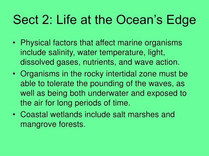 Sect 2: Life at the Ocean's Edge
