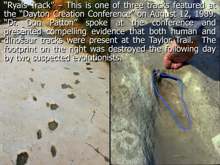 """Ryals Track"" – This is one of three tracks featured at the ""Dayton Creation Conference"" on August 12, 1989. ""Dr. Don Patton"" spoke at the conference and presented compelling evidence that both human and dinosaur tracks were present at the Taylor Trail.  The footprint on the right was destroyed the following day by two suspected evolutionists."
