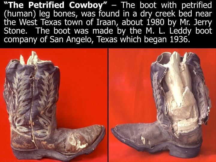 """The Petrified Cowboy"""