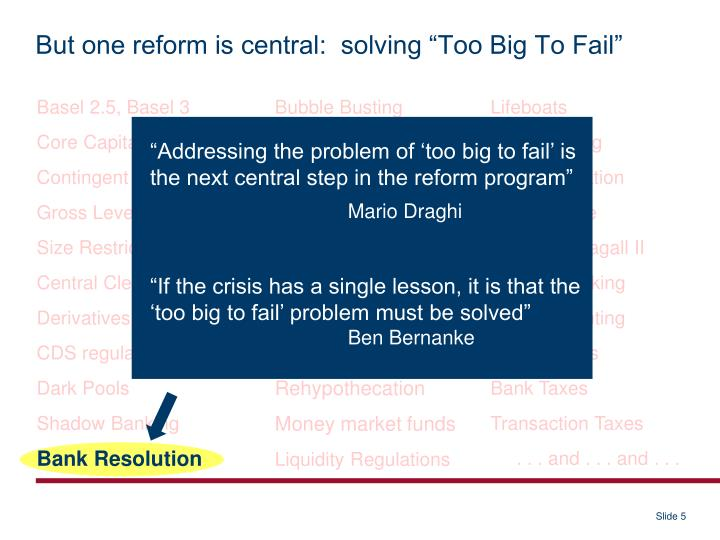 "But one reform is central:  solving ""Too Big To Fail"""