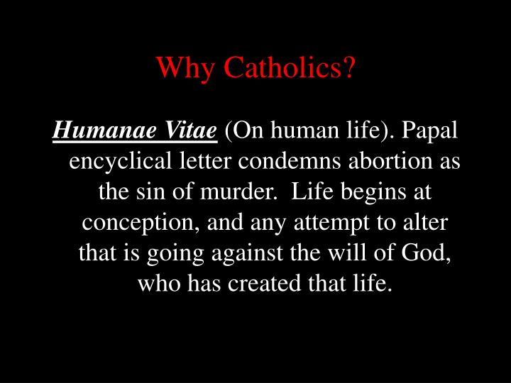 Why Catholics?