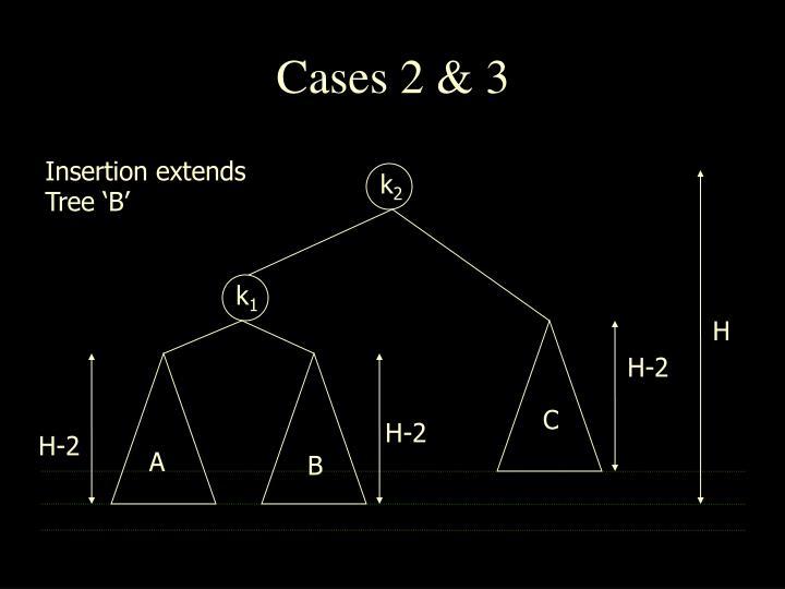 Cases 2 & 3