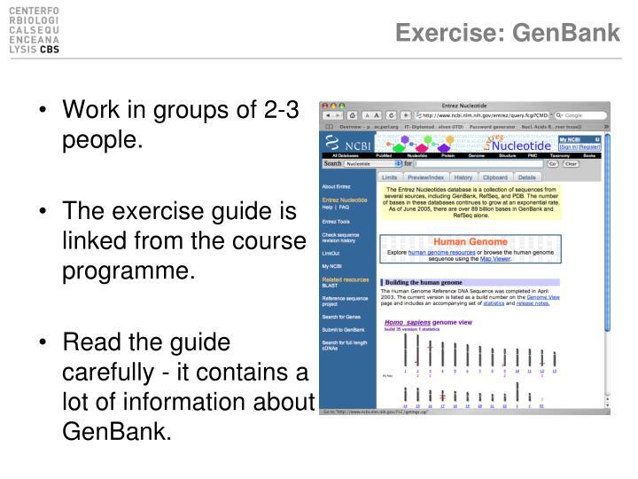 Exercise: GenBank