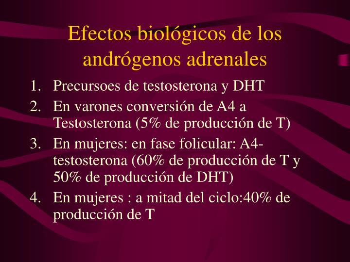 Efectos biológicos de los andrógenos adrenales