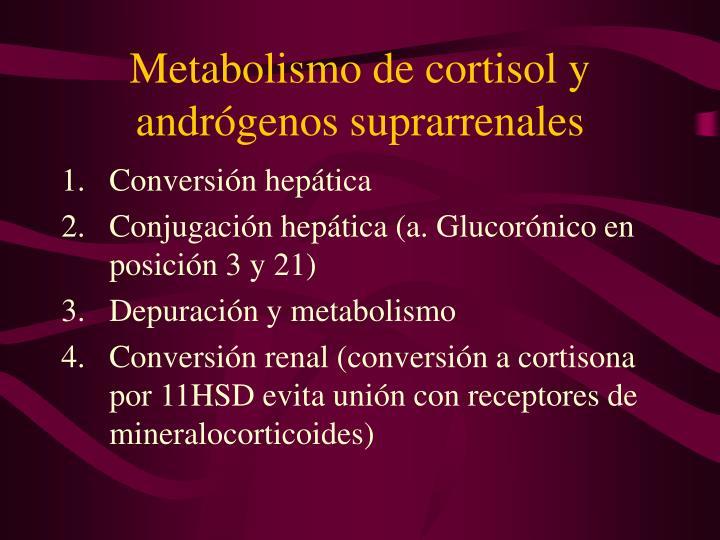Metabolismo de cortisol y andrógenos suprarrenales