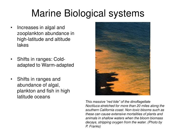 Marine Biological systems