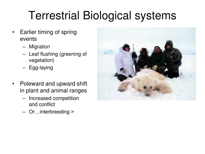 Terrestrial Biological systems