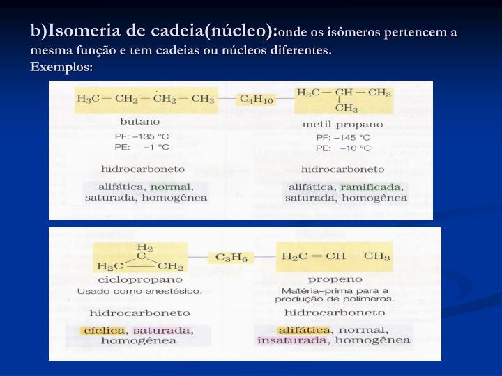b)Isomeria de cadeia(núcleo):