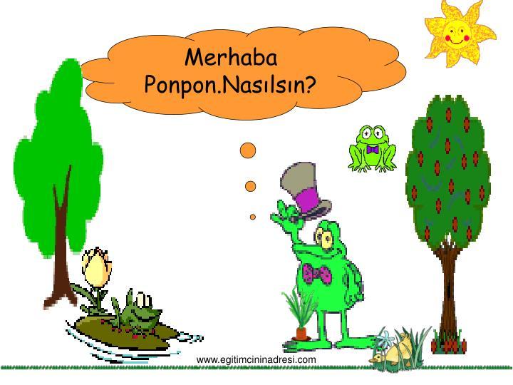 Merhaba Ponpon.Nasılsın?