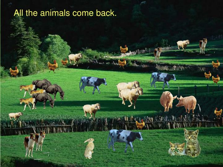 All the animals come back.