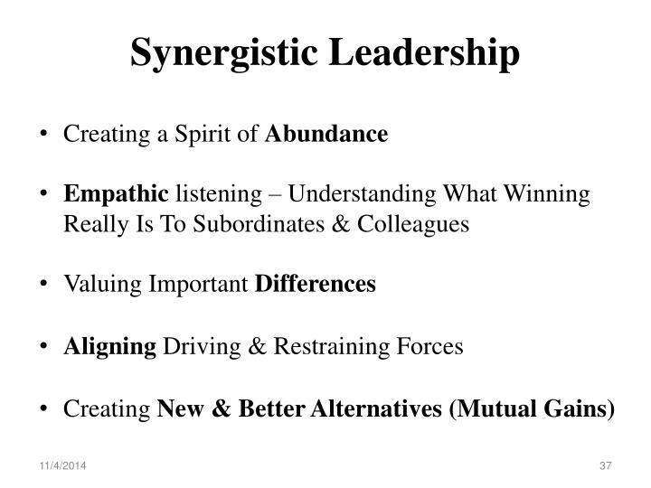 Synergistic Leadership