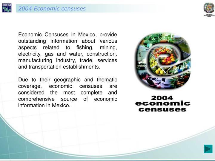 2004 Economic censuses
