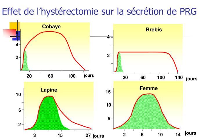 Effet de l'hystérectomie sur la sécrétion de PRG