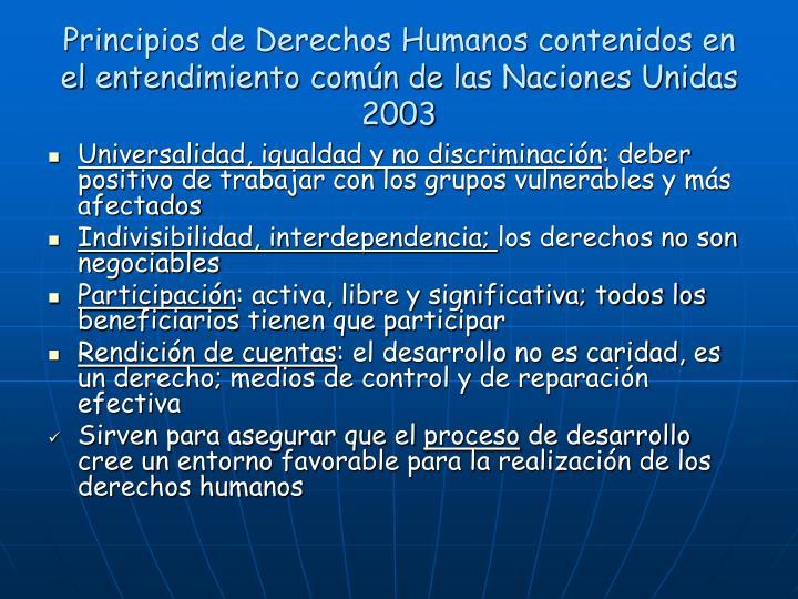 Principios de Derechos Humanos contenidos en el entendimiento común de las Naciones Unidas 2003