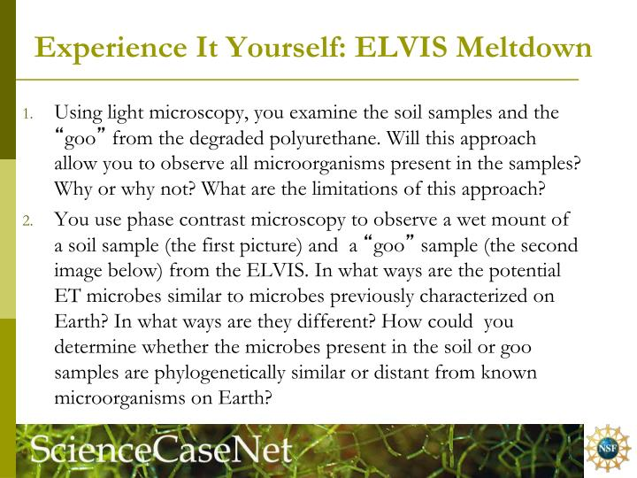 Experience It Yourself: ELVIS Meltdown