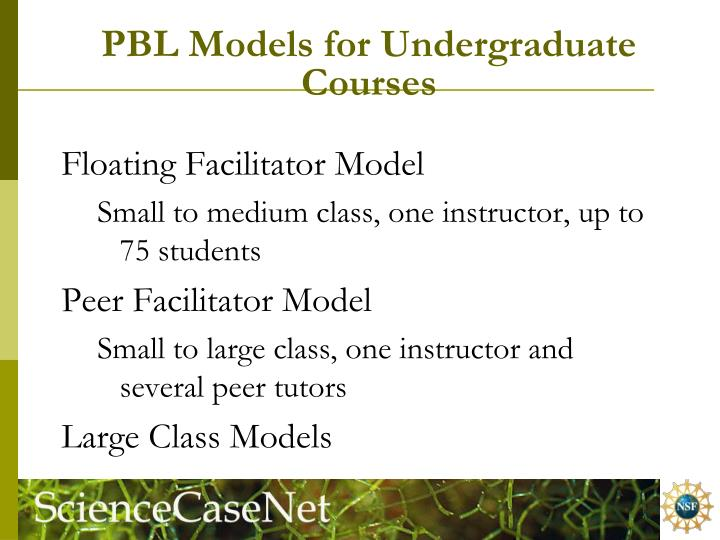 PBL Models for Undergraduate Courses
