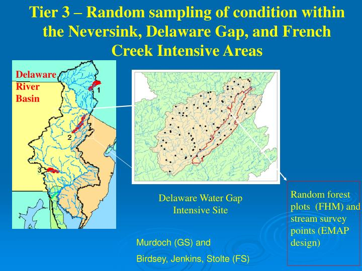 Tier 3 – Random sampling of condition within the Neversink, Delaware Gap, and French Creek Intensive Areas