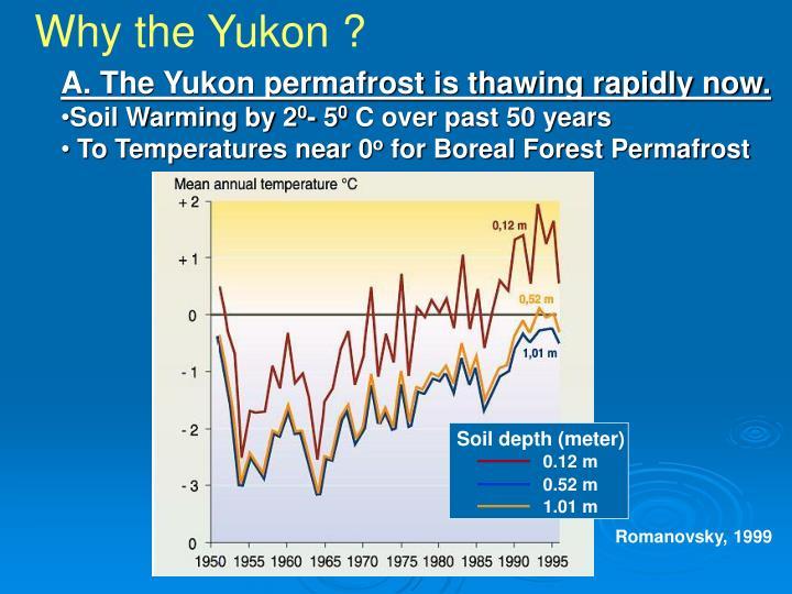 Why the Yukon ?