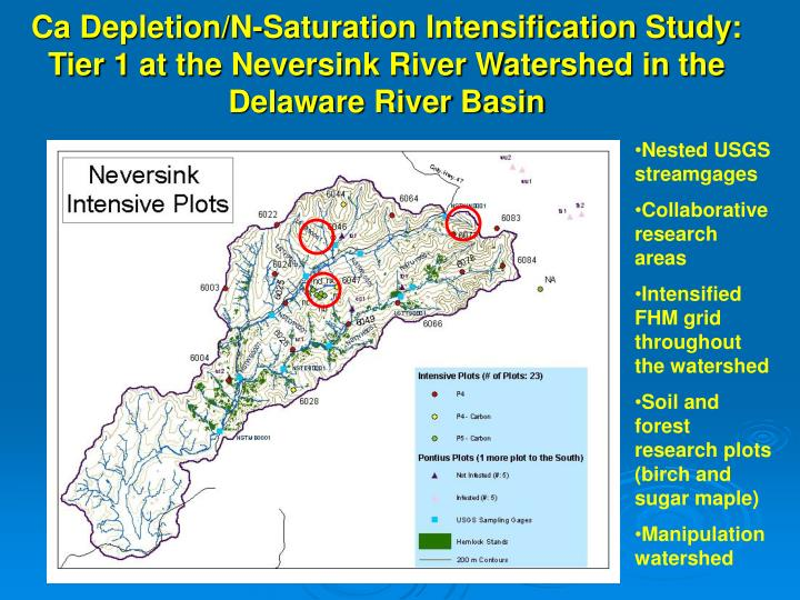 Ca Depletion/N-Saturation Intensification Study: Tier 1 at the Neversink River Watershed in the Delaware River Basin